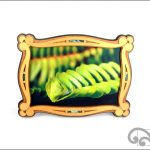 Maori koru photo frame