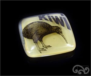 Kiwi glass note weights