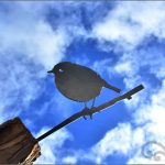 Metal birds black robin