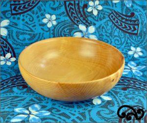 HUGE copper beech bowl