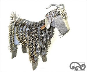 Corrugated iron angora goat